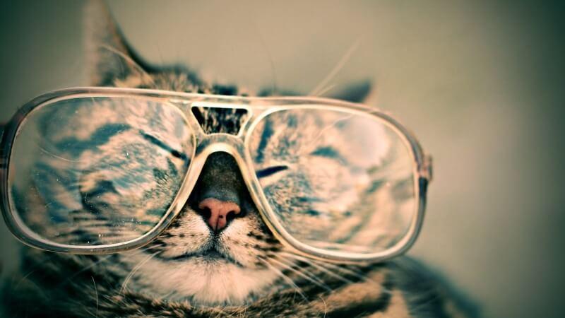 實證有效!神奇的老花眼自癒法:丹麥視力訓練大師獨創的視力自然療法